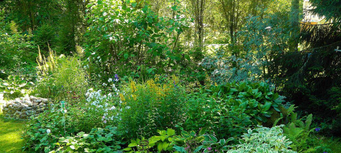 Comment Amenager Un Petit Jardin Meosix